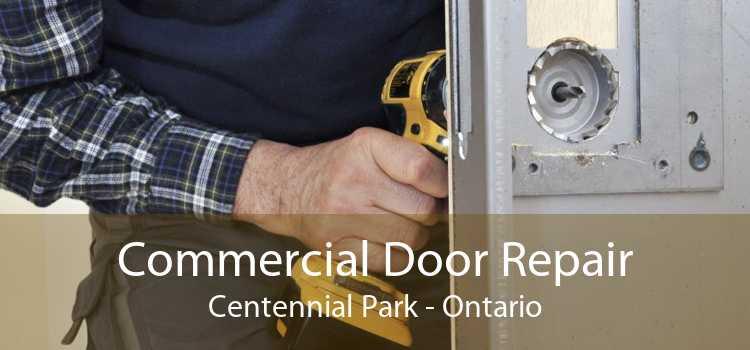 Commercial Door Repair Centennial Park - Ontario