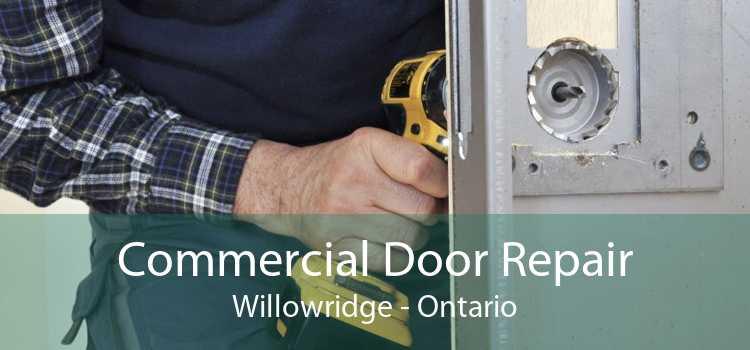 Commercial Door Repair Willowridge - Ontario