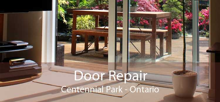 Door Repair Centennial Park - Ontario