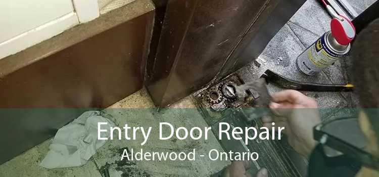 Entry Door Repair Alderwood - Ontario