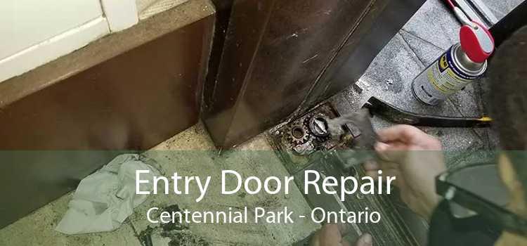 Entry Door Repair Centennial Park - Ontario