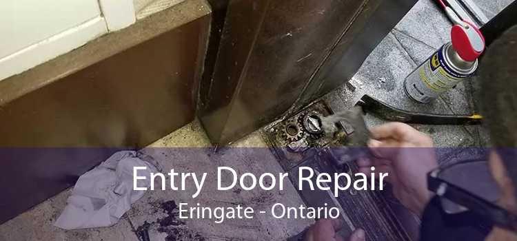 Entry Door Repair Eringate - Ontario