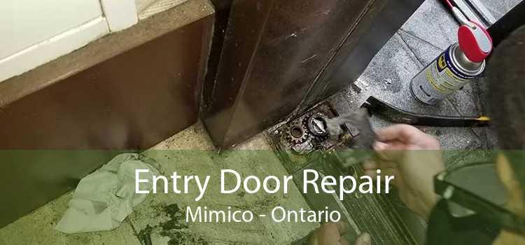 Entry Door Repair Mimico - Ontario