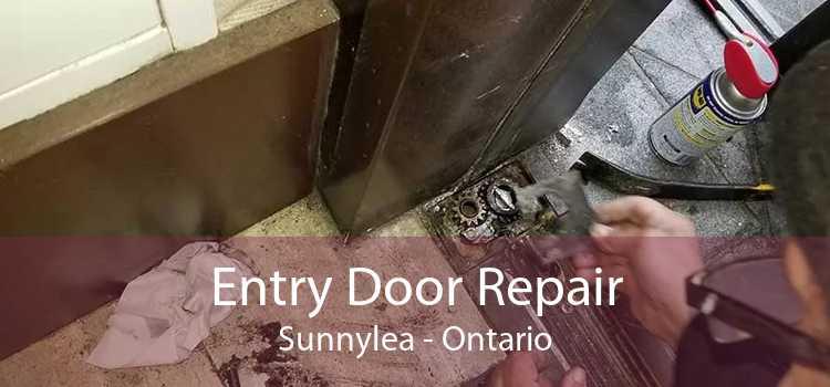 Entry Door Repair Sunnylea - Ontario