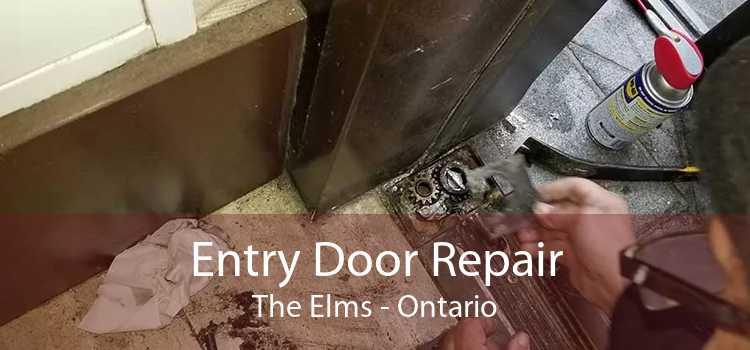 Entry Door Repair The Elms - Ontario