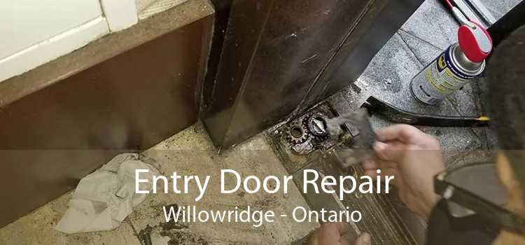 Entry Door Repair Willowridge - Ontario