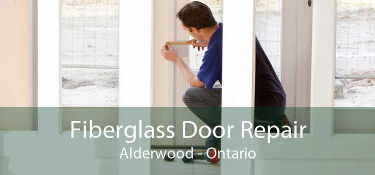 Fiberglass Door Repair Alderwood - Ontario