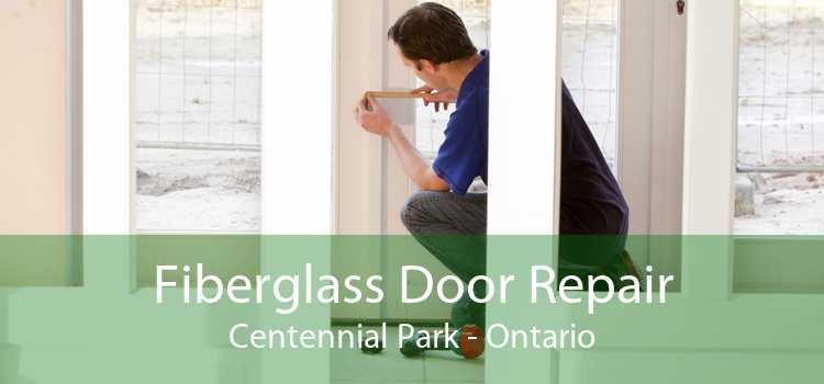 Fiberglass Door Repair Centennial Park - Ontario