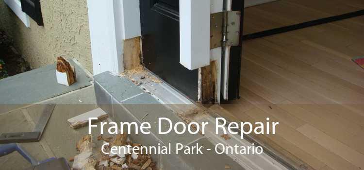 Frame Door Repair Centennial Park - Ontario