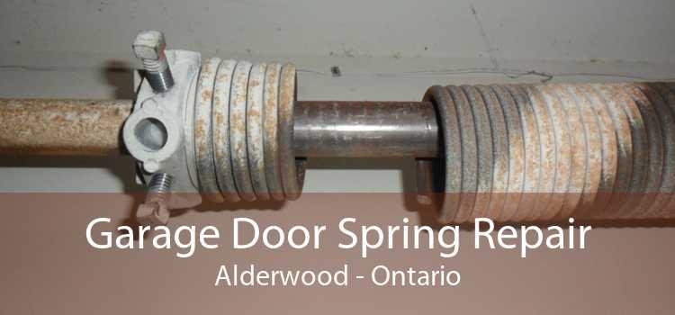 Garage Door Spring Repair Alderwood - Ontario
