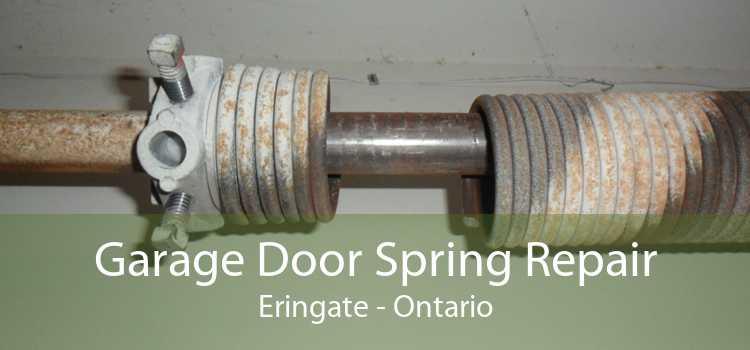 Garage Door Spring Repair Eringate - Ontario