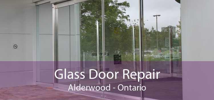 Glass Door Repair Alderwood - Ontario