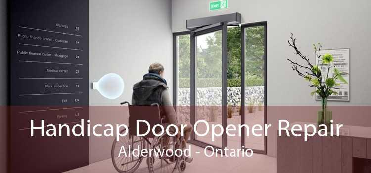 Handicap Door Opener Repair Alderwood - Ontario