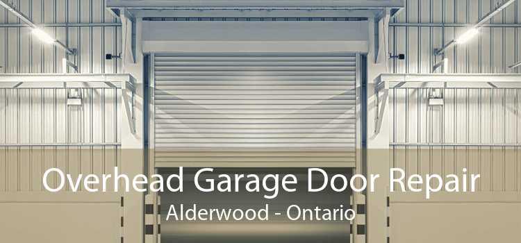 Overhead Garage Door Repair Alderwood - Ontario
