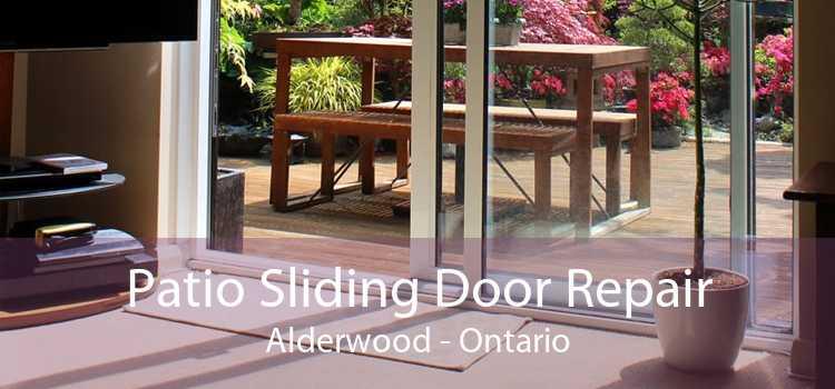 Patio Sliding Door Repair Alderwood - Ontario