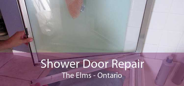 Shower Door Repair The Elms - Ontario