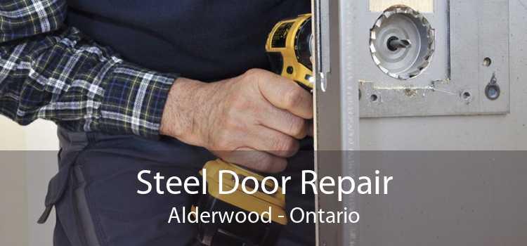Steel Door Repair Alderwood - Ontario