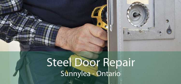 Steel Door Repair Sunnylea - Ontario