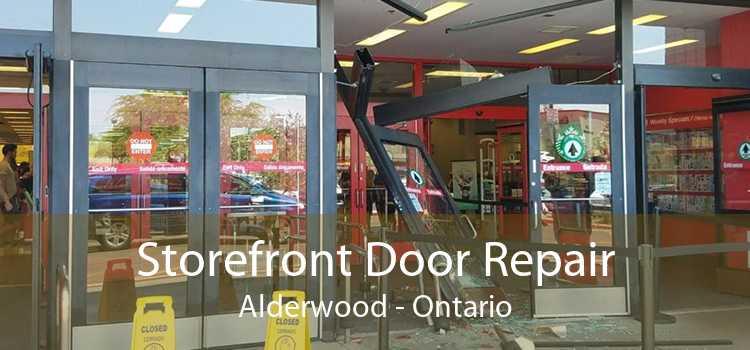 Storefront Door Repair Alderwood - Ontario