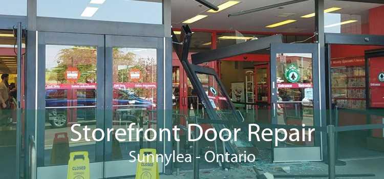 Storefront Door Repair Sunnylea - Ontario